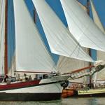 Klipperrace: spektakel met 80 schepen